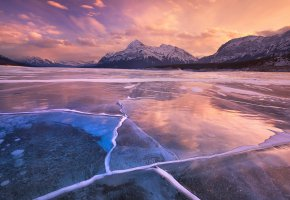 Обои frozen, cold, tree, зима, горы, лед