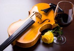 Обои роза, желтая, цветок, скрипка, струны, вино, бокал