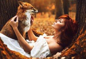 Обои Девушка, лиса, осень, рыжая, Лес, платье, белое, лис