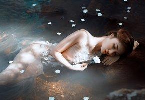 Обои цветок, река, девушка, вода, мокрая, позирует