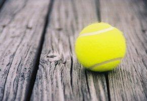 Обои ball, мяч, tennis, sport, теннис
