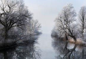 Обои зима, река, туман, деревья, ветки