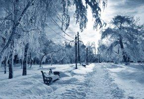 Обои парк, снег, деревья, зима, лавочки, столбы