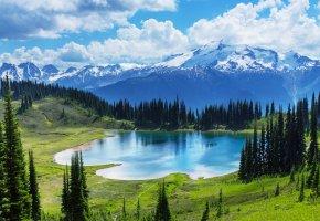 Обои Moraine, озеро, Banff National park, лес, Canada