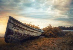 Обои лодка, берег, небо, трава, кусты