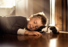 Обои котёнок, мальчик, сон, ребенок, мило
