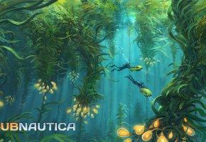 Обои Игра, растительность, водолазы, водоросли, Субнатика, Subnautica