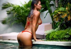 Обои девушка, бассейн, мокрая, фигурка, купальник, бикини