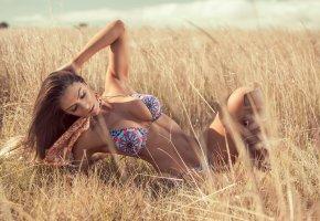 Обои степь, лето, купальник, девушка, фигура, трава