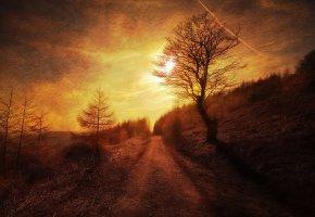 Обои закат, деревья, ночь, дорога, склон