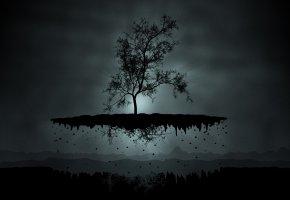 Обои дерево, корни, свет, земля