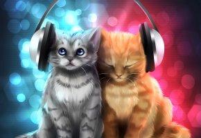 Обои Котята, рыжий, серый, наушники, музыка