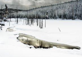 Обои зима, лес, снег, вода, река, деревья