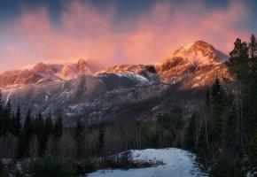 Обои лес, горы, свет, снег, деревья, зима, пейзаж