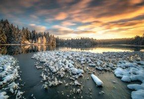 Обои снег, Швейцария, озеро, утро, зима, лес, небо
