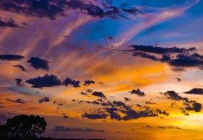Обои закат, Небо, дерево, облака