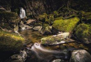 Обои лес, мох, речка, камни, водопад
