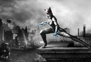 женщина-кошка, catwoman, Batman arkham city armored edition, selina kyle