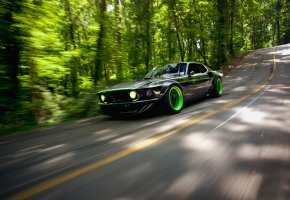 rtr-x, дорога, природа, Ford, mustang