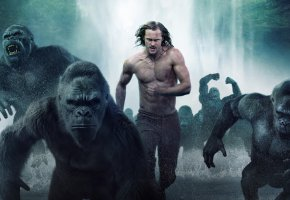 Обои The Legend of Tarzan, Tarzan, King of the Jungle, Film, Тарзан, обезьяны