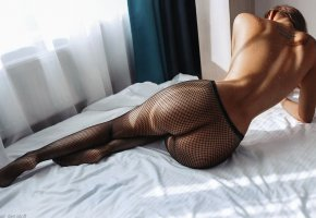 Обои Tatoo, tanned, ass, perfect, legs, back, wasser, drops, brunette