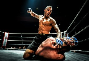 Обои Fight, MMA, Ground, битва, кулак, ринг