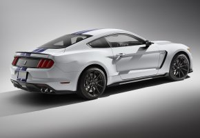 Обои Mustang, Sportcar, GT350, Shelby, Car